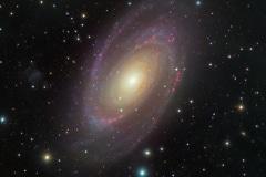 M81 Bodes Galaxy (Crowd image)
